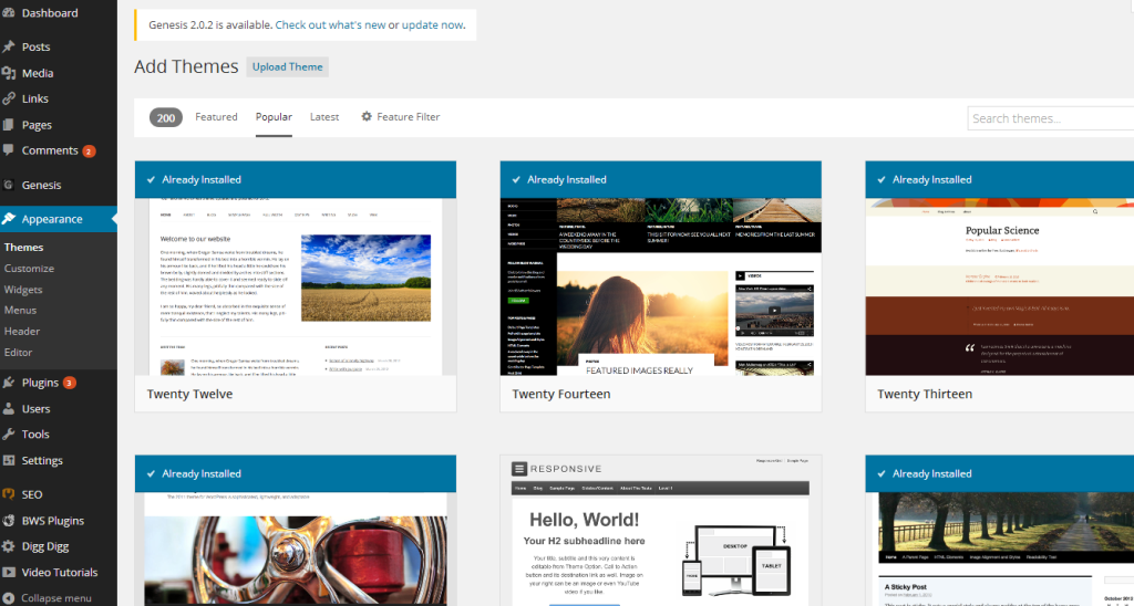 Blog_Appearance Theme