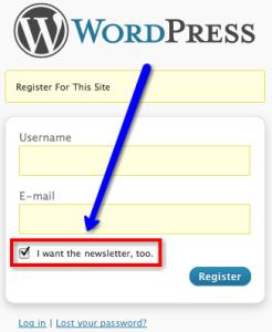 BIg Ideas Blog email marketing